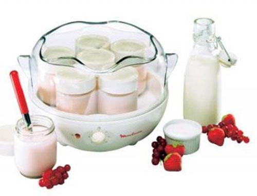 Ийгурт в йогуртнице мулинекс