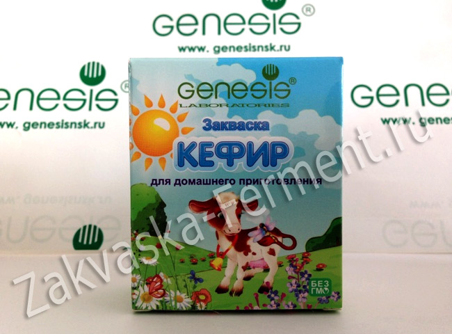 suxaya-zakvaska-kefir-genesis-3