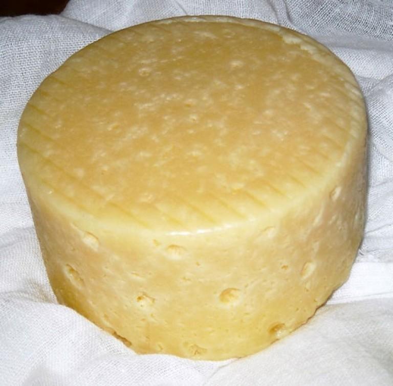 Рецепт сыра из молока с пепсином в домашних условиях